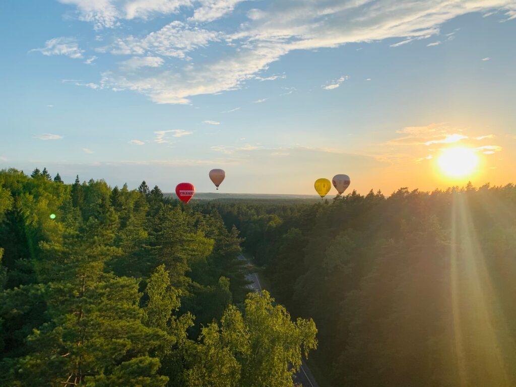balloons-playing-over-the-trees